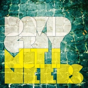 David-Gray Mutineers album cover