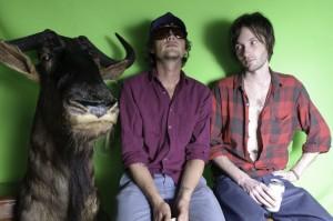 DrugCabin-Wildebeest-BethStirnaman