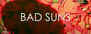 BAD SUNS FLOWERS  BANNER